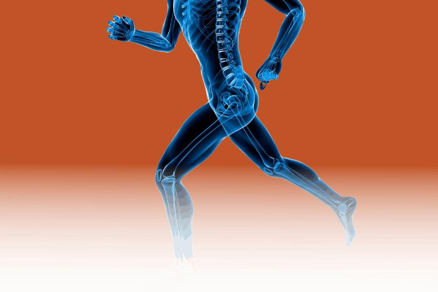 LHKI orthopaedic